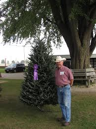 Menards Fresh Cut Christmas Trees by Wctpa Tree U0026 Wreath Contest Convention Growers Meeting
