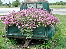 100 Martin Farm Trucks Old Truck Flowerbed So Need To Do This With The One We Have