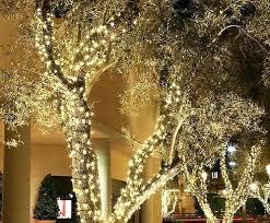Tree Trunk Wrap Lights Palm Solar Net Style Christmas