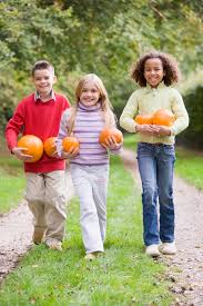 Canby Pumpkin Patch by Best Pumpkin Patches Located Around Portland Oregon