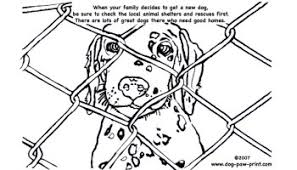 Kids Coloring Page A Dalmation To Adopt