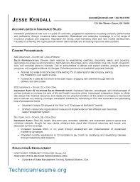 Insurance Resume Objective Teens Homework Help Statement