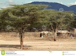 100 Houses F Village And Of The Samburu Tribe In Kenya Stock Image