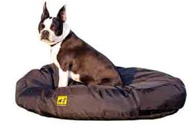 Chew Proof Dog Beds by Experience With K9 Ballistics Chewproof Orthopedic Dog Beds