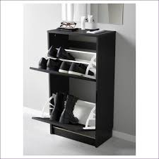 Boot Cabinet by Furniture Fabulous Ikea Pull Out Shoe Storage Shoe Cabinet Ideas