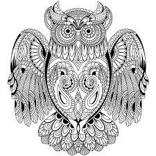 Kaisercolour Coloring Poster 27x19 Owl
