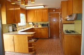 Kitchen Styles Cheap Remodel Before And After 1980s 50s Painted Cabinets
