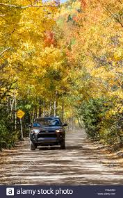 100 Aspen Truck Moving SUV Truck Autumn View With Leaves Changing Color Dirt