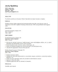 Some Examples Of Resumes