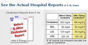 hdl cholesterol range normal supplements for health cardioxine