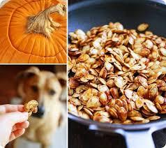 Sprout Pumpkin Seeds Recipe by Salted Caramel Pumpkin Seeds