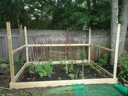 Vegetable Garden Fence Home Depot | Home Outdoor Decoration Projects Design Garden Benches Home Depot Stunning Decoration 1000 Pocket Hose Top Brass 34 In X 50 Ft Expanding Hose8703 Lifetime 15 8 Outdoor Shed6446 The Covington Georgia Newton County College Restaurant Menu Attorney Border Fence Fencing Gates At Fence Gate Popular Lock Flagstone Pavers A Petfriendly Kitchen With Gardenista Living Today Cedar Raised Bed Shed