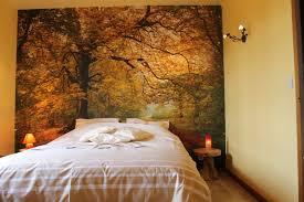chambre foret chambre forêt en automne au fil des saisons unregistered version