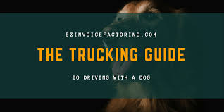 Trucking With A Dog | What You Should Know Removals Lorry Stock Photos Images Alamy Man Loses Job And Catches Wife Cheating On The Same Day Then This Out Of Road Driverless Vehicles Are Replacing The Trucker Selfdriving Trucks Are Now Running Between Texas And California Wired China Is Getting Its First Big American Pickup Truck F150 Raptor Four Things Tesla Needs To Reveal When It Launches Semi Truck Oversize Trucking Permits Trucking For Heavy Haul Or Oversize Without Tshirt 4 Otr Pete Peterbilt 379 387 359 Ford Poems 20 Reasons Why Diesel Worst Horse Nation Teslas Electric Elon Musk Unveils His New Freight How Went From A Great Terrible One Money