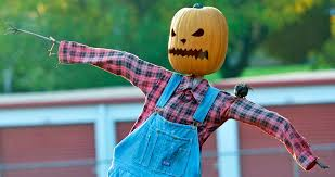Pumpkin Patch Houston Oil Ranch by Scarecrow Festivals Let You Play In The Hay Houston Chronicle