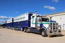 100 Cattle Truck For Sale Cannon Trailers Livestock Trailer Manufacturers Makers Of