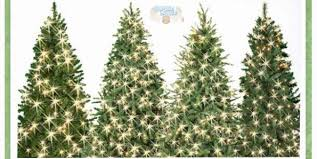 Christmas Tree Types Canada by Michaels Canada 50 Off All Christmas Trees 6 Feet U0026 Taller