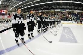 l évolution du bâton de hockey adg