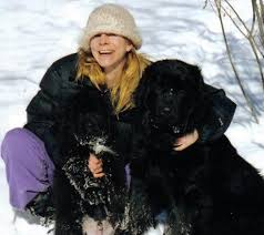 Do Newfoundlands Shed Hair by Don U0027t Buy A Newfie Or Do Buy A Newfie U2013 High Country Newfoundlands