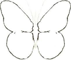 Maple Seed Butterfly Art Crafts Home Decor Wall