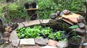 Small Backyard Garden Koi & Goldfish Pond - Update (Part 2 Of 2 ... Ese Zen Gardens With Home Garden Pond Design 2017 Small Koi Garden Ponds And Waterfalls Ideas Youtube Small Backyard Design Plans Abreudme Backyard Ponds 25 Beautiful On Pinterest Fish Goldfish Update Part 1 Of 2 Koi In For Water Features Information On How To Build A In Your Indoor Fish Waterfall Ideas Eadda Backyards Terrific