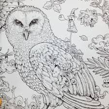 An Owl From Animorphia That I Cant Wait To Get My Hands On
