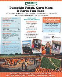 Pumpkin Patch Seattle Washington by Carpinito Bros Pumpkin Farm U0026 Corn Maze Thrifty Nw Mom