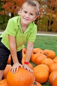 Piedmont Service Center Pumpkin Patch by Travelok Com Oklahoma U0027s Official Travel U0026 Tourism Site