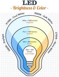 led light bulbs a for the switch bulbs