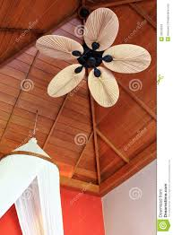 Decorative Ceiling Fan Blade Covers by A Room With Palm Leaf Shaped Ceiling Fan Blade Stock Photos
