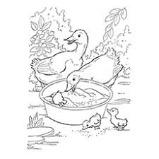 Easter Goose Coloring Page