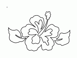 Hibiscus Coloring Page 241664