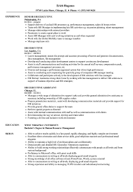 HR Executive Resume Samples | Velvet Jobs