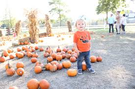 Sunny Side Pumpkin Patch Hours by 2016 November U2013 Lifeasmeghan Com