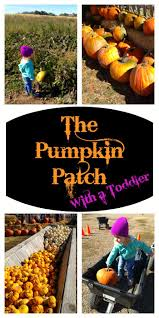 Pumpkin Patches In Cincinnati Oh by 46 Best Us State U0026 National Parks Images On Pinterest Usa Travel
