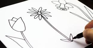 Simple Flower Art Drawing How To Draw Three Spring Flowers