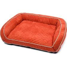 Petco Dog Beds by 356 Best My Pet Dreamboard Images On Pinterest Pet Supplies Pet