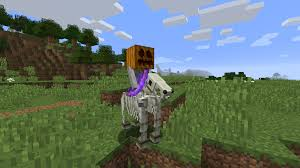 Minecraft Pumpkin Farm 111 by The New Skeleton Riders Should Spawn With A Pumpkin On Their Heads