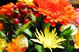 Make It A Wonderful Life by Make It A Wonderful Life Thank You Flowers