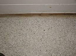 Terrazzo Restoration Polishing