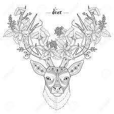 Elegant Deer Head Coloring Page In Exquisite Style Stock Vector