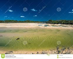100 Currimundi Beach Lake During Low Tide Family Friendly