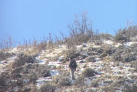 Shed Hunting Southern Utah by 16 People Cited For Illegally Collecting Shed Antlers Ksl Com