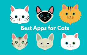 best apps for cats apps for cats appsoup
