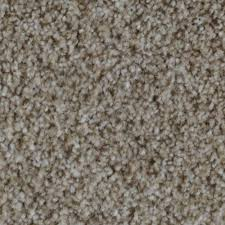 Par Rating Carpet by Trendy Threads Ii Color Crafton Texture 12 Ft Carpet H0104 806