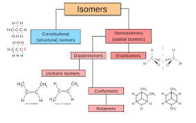 Chair Conformation Of Cyclohexane 3d by Stereoisomerism Wikipedia