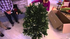 Qvc Christmas Tree With Remote by Santa U0027s Best 5 U0027 Colorado Spruce Tree W Ez Power U0026 7 Light
