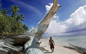Tuvalu That Sinking Feeling by Tuvalu Plots World U0027s First Zero Carbon Output By 2020