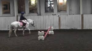 100 Wellington Equestrian Club Nicole Spangles Riding Pony Prix Caprilli Test