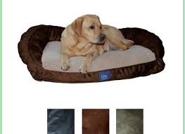 Serta Dog Beds by Serta Dog Bed Small The Best Of Bed And Bath Ideas Hash Dog Beds